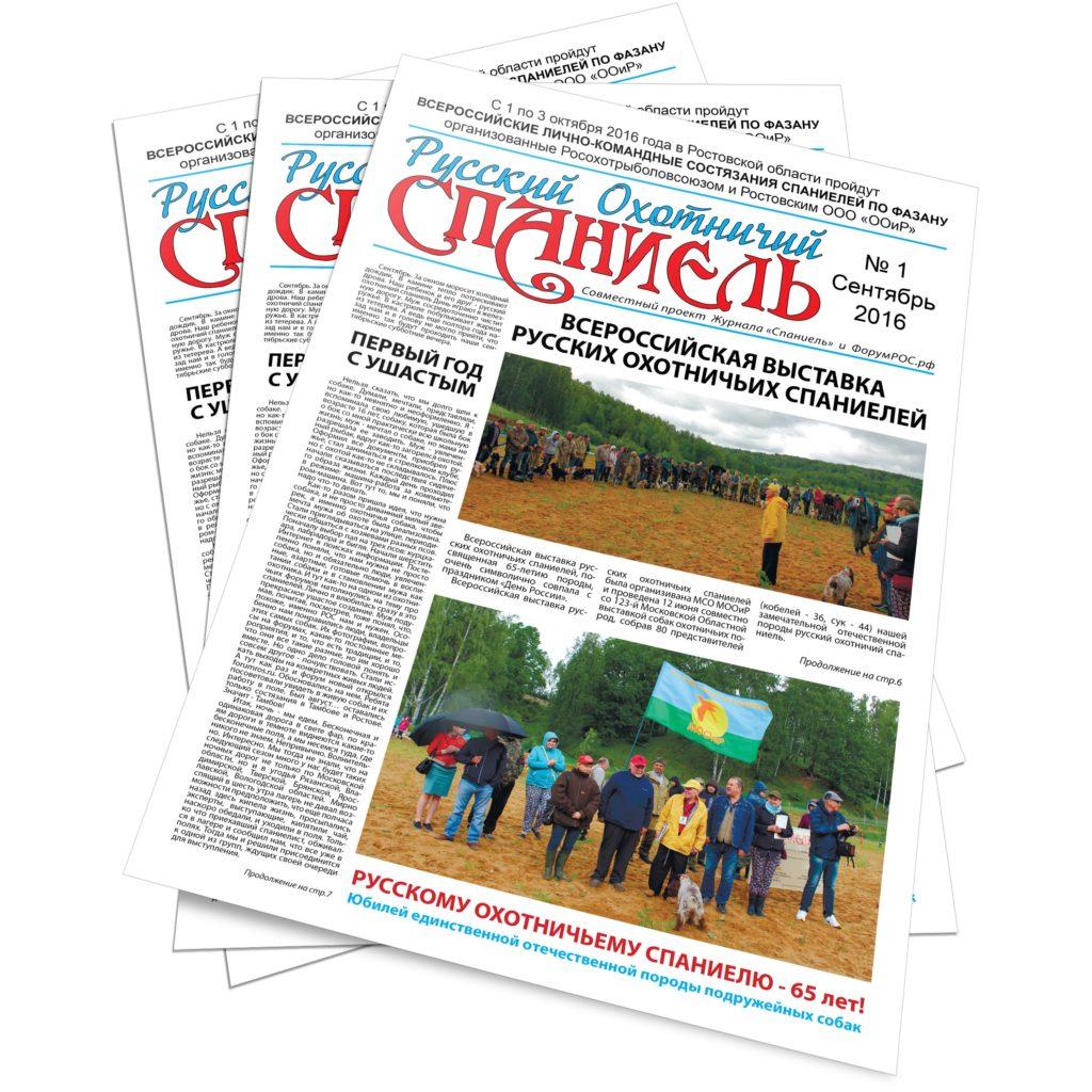 gazeta_ros_1_2016